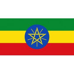 半磅入衣索比亞 耶加雪菲G1 金蕾娜安芭雅鎮 席林加村 LOT 6 水洗