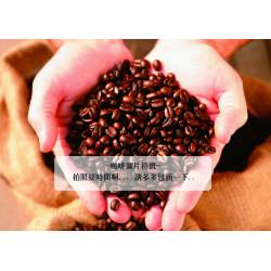 半磅入哥斯大黎加 舒瑪瓦處理廠 寶兒莊園 紅蜜